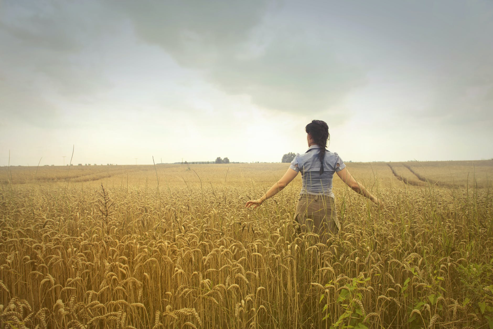 woman standing on rice field during cloudy day