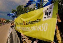 Photo of WWF ABRUZZO RICORDA I 10 ANNI DAL REFERENDUM CONTRO IL NUCLEARE